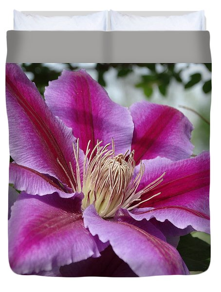 Pink Clematis Vine Duvet Cover by Rebecca Overton
