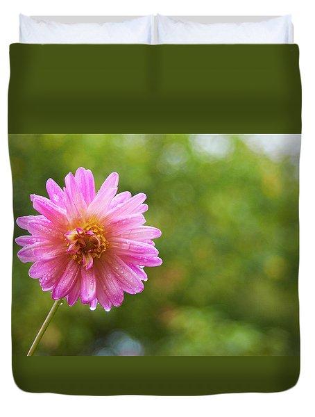 Pink Dahlia 1 Duvet Cover