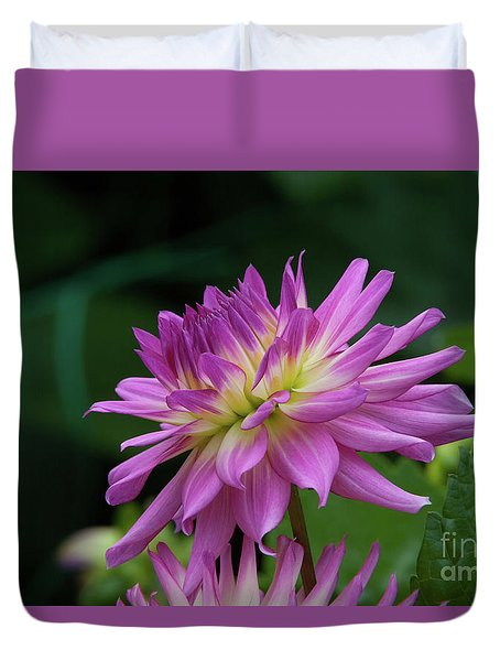 Pink Dahlia Duvet Cover by Glenn Franco Simmons