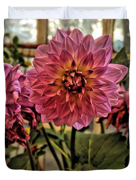 Pink Dahlias Duvet Cover by Bonnie Bruno