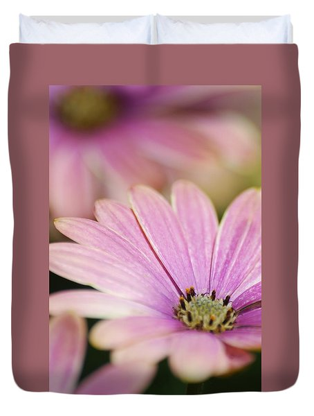 Duvet Cover featuring the photograph Pink Daisy by Ramona Whiteaker