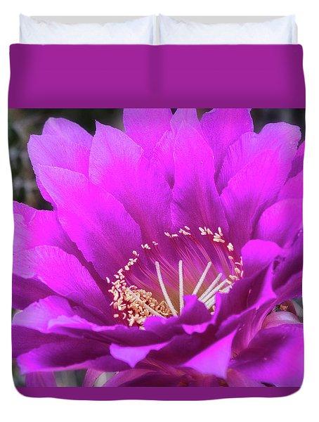 Duvet Cover featuring the photograph Pink Echinopsis Bloom  by Saija Lehtonen