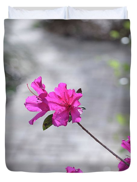 Duvet Cover featuring the photograph Pink Flowers by Raphael Lopez
