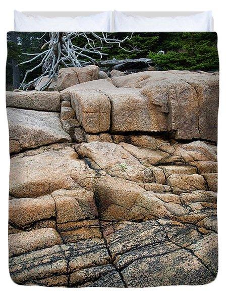 Pink Granite And Driftwood At Schoodic Peninsula In Maine  -4672 Duvet Cover