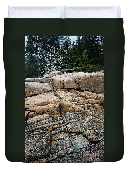 Pink Granite And Driftwood At Schoodic Peninsula In Maine  -4672 Duvet Cover