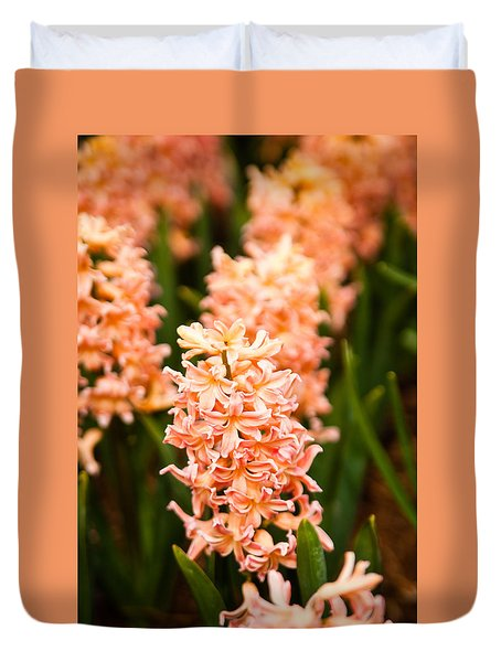 Duvet Cover featuring the photograph Pink Hyacinth by Erin Kohlenberg