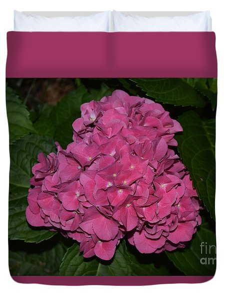 Duvet Cover featuring the photograph Pink Hydrangea by Mark McReynolds