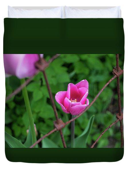 Pink In Stratford Duvet Cover