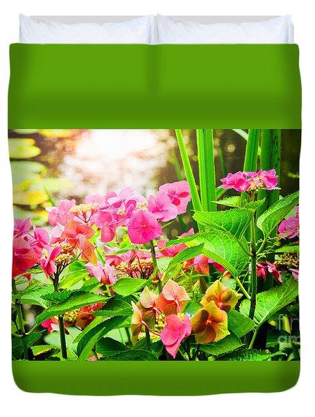Pink Lace Cap Hydrangeas Duvet Cover
