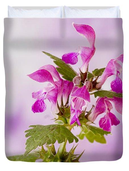 Pink Lamium Macro  Duvet Cover by Sandra Foster