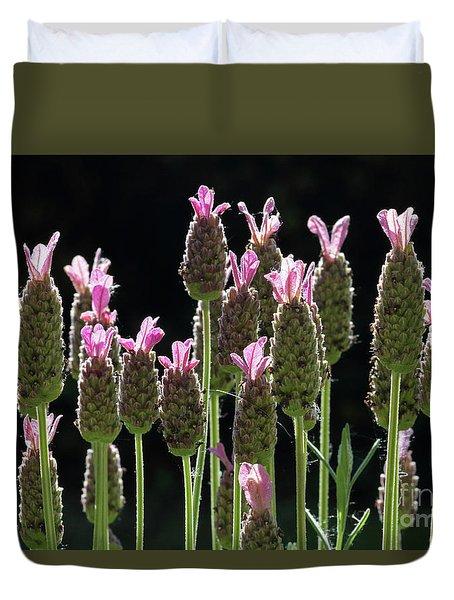 Pink Lavender Duvet Cover