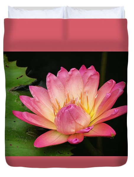 Pink Lily 1 Duvet Cover