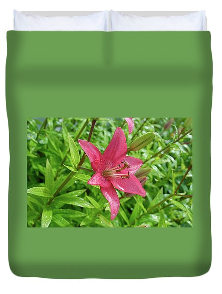Pink Lily Flowers By Tamara Sushko  Duvet Cover