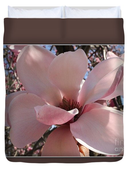 Pink Magnolia In Full Bloom Duvet Cover by Dora Sofia Caputo Photographic Art and Design