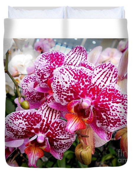 Pink Moth Orchids Duvet Cover