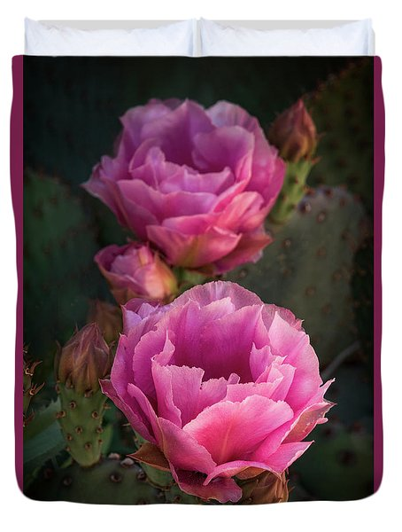 Duvet Cover featuring the photograph Pink Opuntia Blooms  by Saija Lehtonen