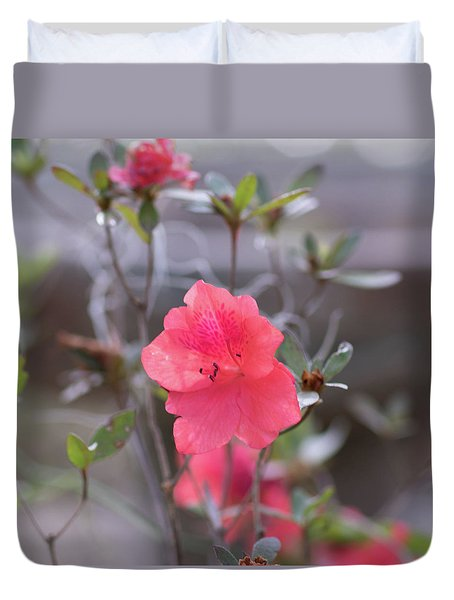 Duvet Cover featuring the photograph Pink Orange Flower by Raphael Lopez