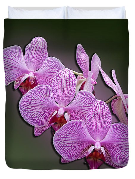 Duvet Cover featuring the photograph Pink Orchids by John Haldane