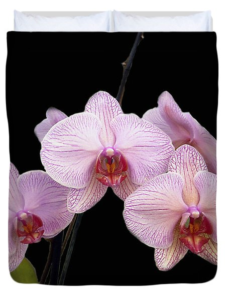 Pink Orchids Duvet Cover by Kurt Van Wagner