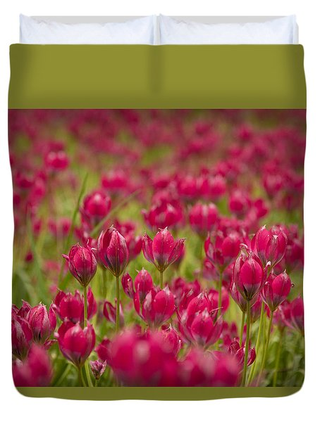 Pink Parade Duvet Cover by David Warrington