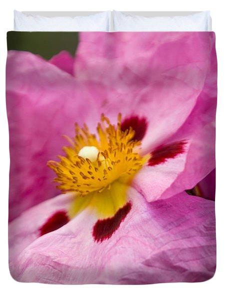 Pink Parchment Flower Duvet Cover
