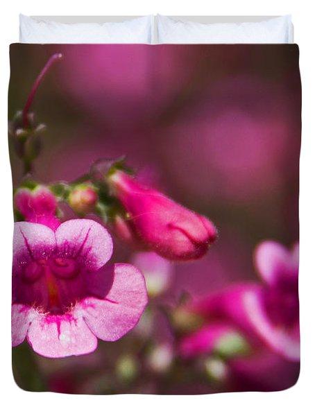 Pink Parry's Penstemon  Duvet Cover