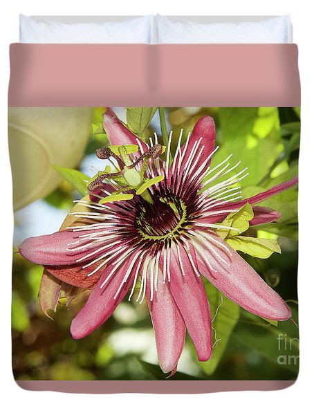 Pink Passiflora Duvet Cover by Elvira Ladocki