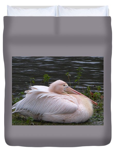 Pink Pelican Duvet Cover by Margaret Brooks