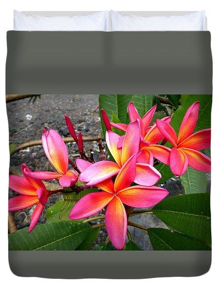 Pink Plumerias Duvet Cover