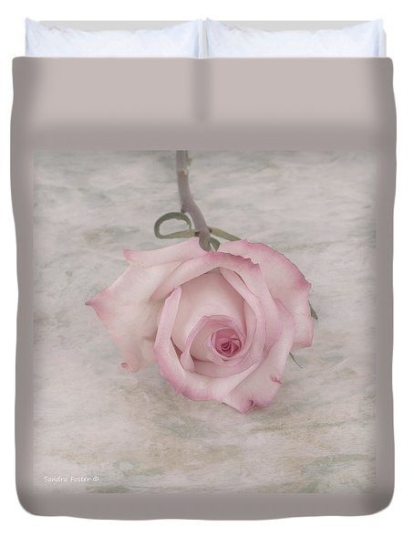 Pink Rose Beauty  Duvet Cover by Sandra Foster