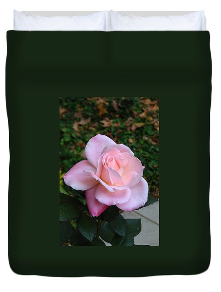 Duvet Cover featuring the photograph Pink Rose by Carla Parris