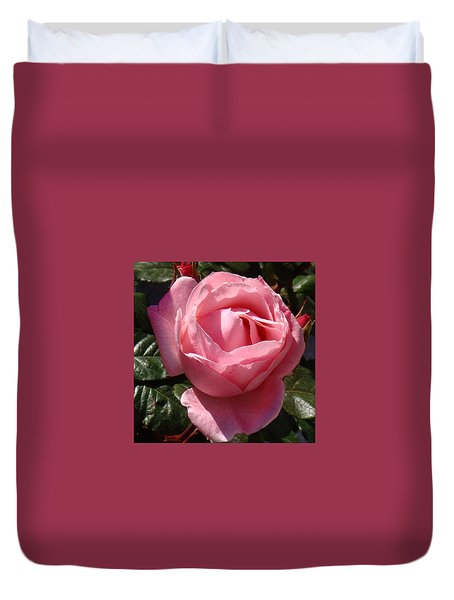 Pink Rose In Spain Duvet Cover