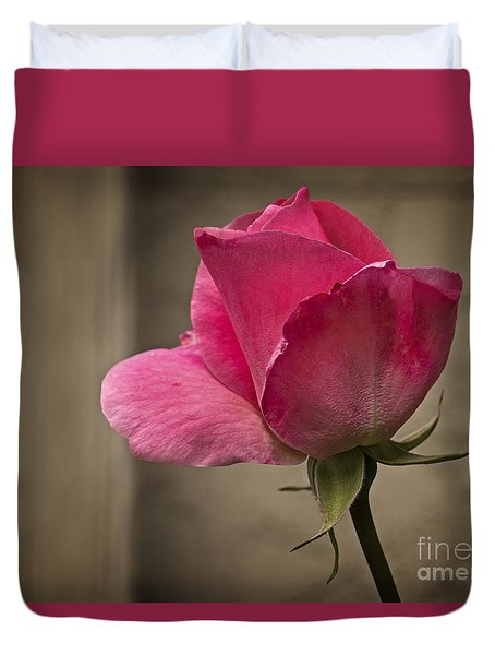 Duvet Cover featuring the photograph Pink Rose by Inge Riis McDonald