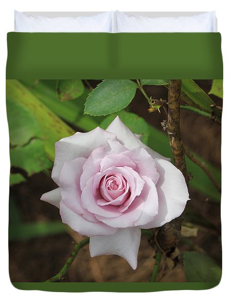 Duvet Cover featuring the photograph Pink Rose by Jerry Battle