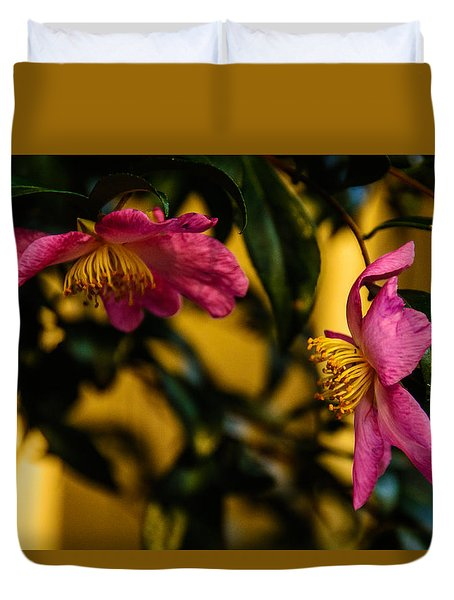 Pink Sasanquas  Duvet Cover