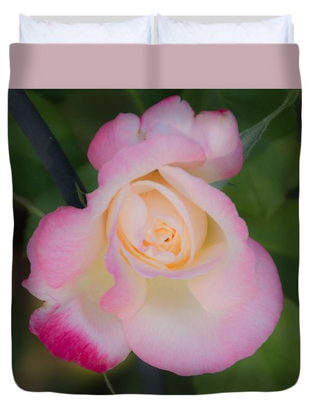 Pink Tinged Rose Duvet Cover