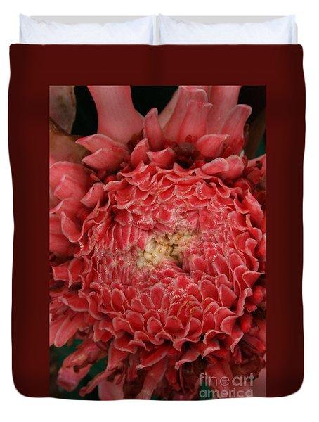 Pink Torch Ginger 1 Duvet Cover
