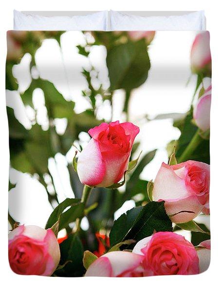 Pink Trimmed Roses Duvet Cover by Marilyn Hunt