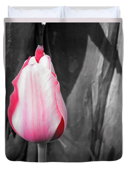 Pink Tulip Duvet Cover by Chad and Stacey Hall