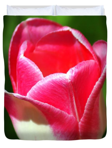 Pink Tulip Duvet Cover by Marty Koch