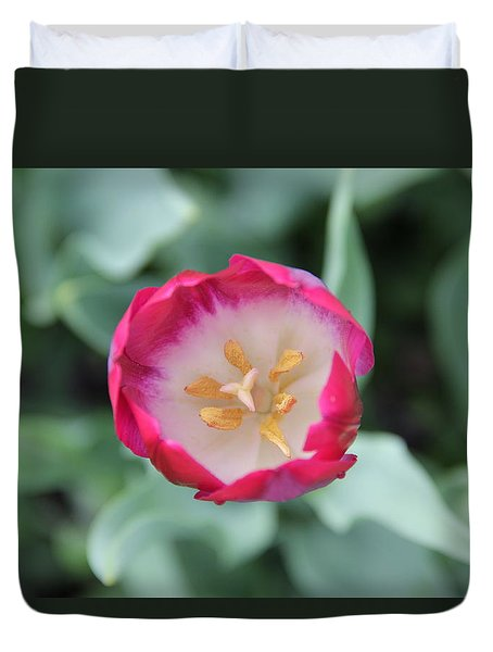 Pink Tulip Top View Duvet Cover