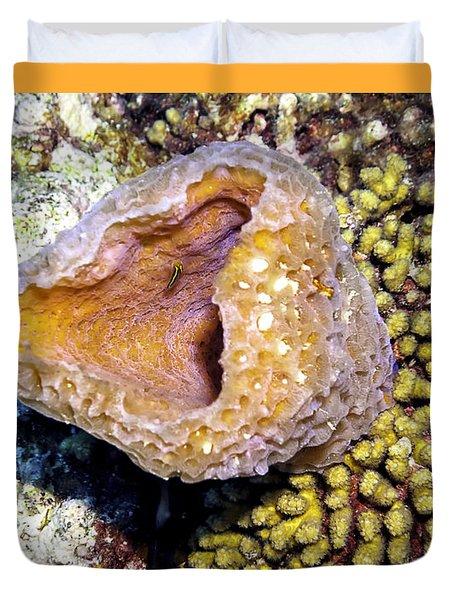 Pink Vase Sponge Duvet Cover