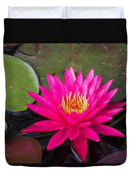 Pink Waterlily Garden Duvet Cover