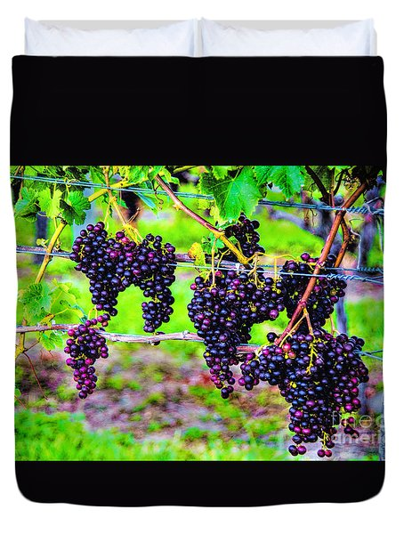 Pinot Noir Grapes Duvet Cover