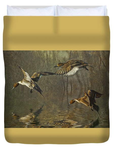 Pintail Ducks Duvet Cover by Brian Tarr