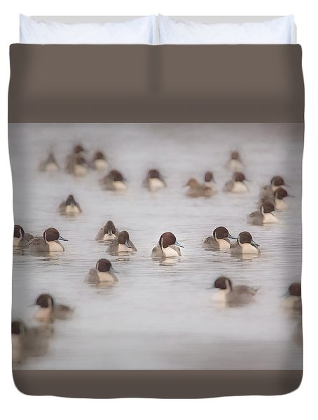 Duvet Cover featuring the photograph Pintail Repeat  by Kelly Marquardt