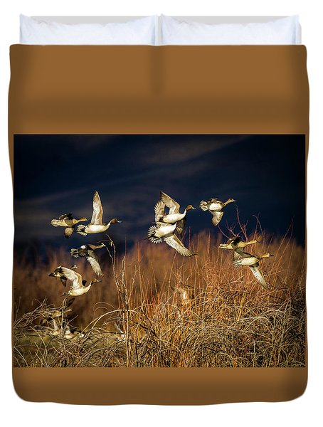 Pintails And Wigeons Duvet Cover