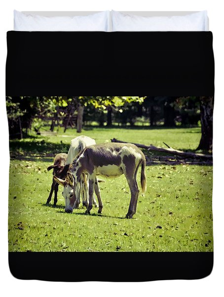 Duvet Cover featuring the photograph Pinto Donkey I by Jan Amiss Photography