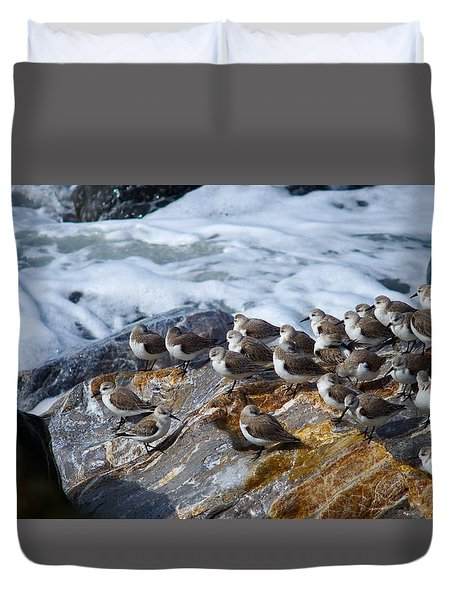 Piper Convention Duvet Cover