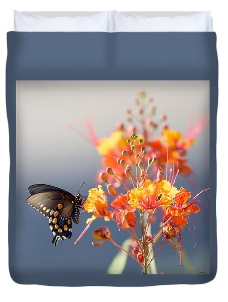 Pipevine Swallowtail Duvet Cover